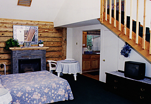 Spacious Cabin Suite.